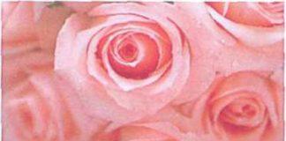 Tác dụng của hoa phong thủy