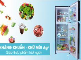 Đặc điểm nổi bật của tủ lạnh Panasonic 188 lít nr ba228pkv1