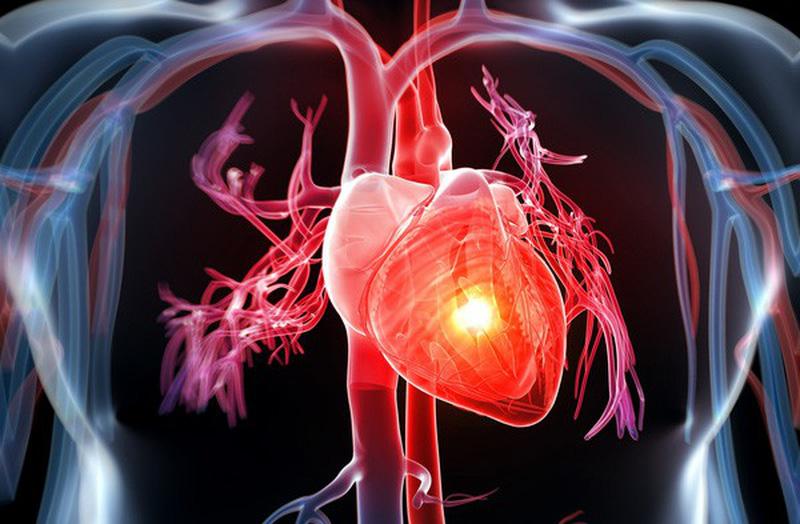 Bệnh về tim mạch