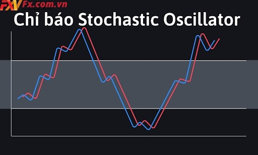 chi-bao-Stochastic-la-gi-1